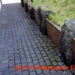Geitungabú við inngang. Geitungurinn fór inn um smágat við steininn lengst til hægri